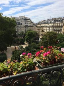 Paris apt