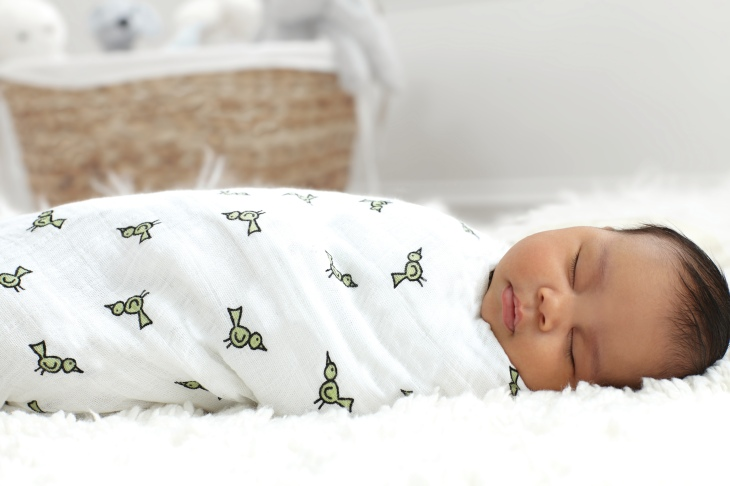 classic swaddle 4 pack jungle jam bird