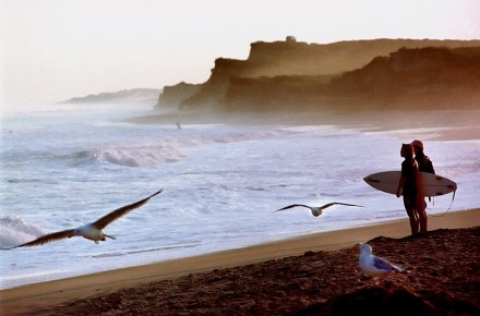 beach-ditchplains