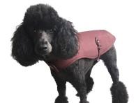 rosa-jacket
