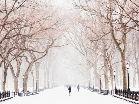 people walking in snow in Central Park New York in the winter