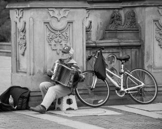 man playing piano accordion at Central Park NYC