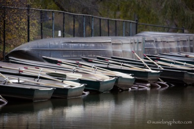 Rowboats in Central Park NYC
