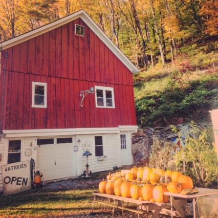 Cabin in the Catskills Upstate New York