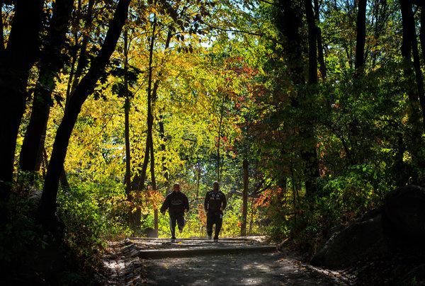 Van-Cortlandt-Park-Running