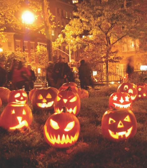 halloween pumpkins in New York park
