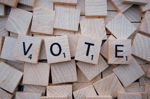 voting vote