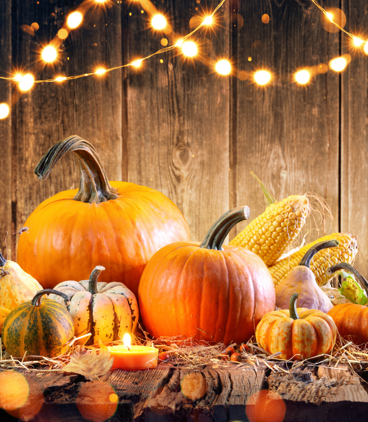 pumpkins fall New York Thanksgiving events